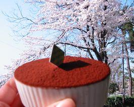sakura and cake